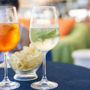 How Pre-dinner Drink Can Save Your Party